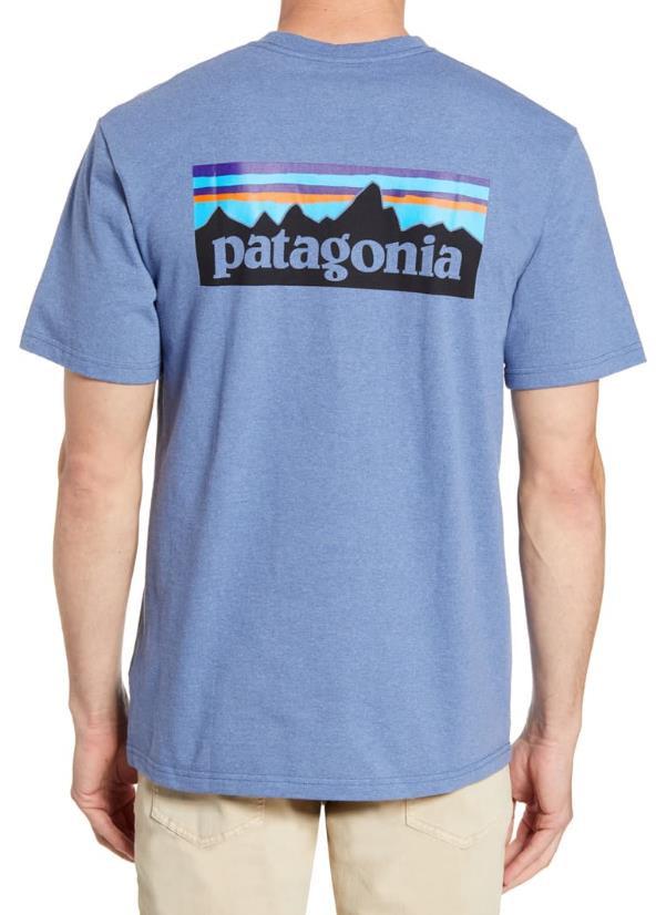 PATAGONIA P-6 Logo Responsibili-Tee - Woodly Blue