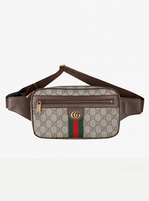 gucci 20ss otipia belt bag (574796 97SIT 8747)